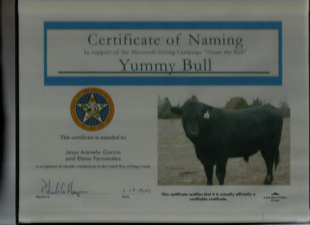 The Yummy Bull Oklahoma ii